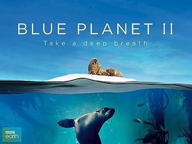Image result for Blue Planet II