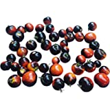 Tomate Indigo Rose 10 Semillas By Samenchilishop