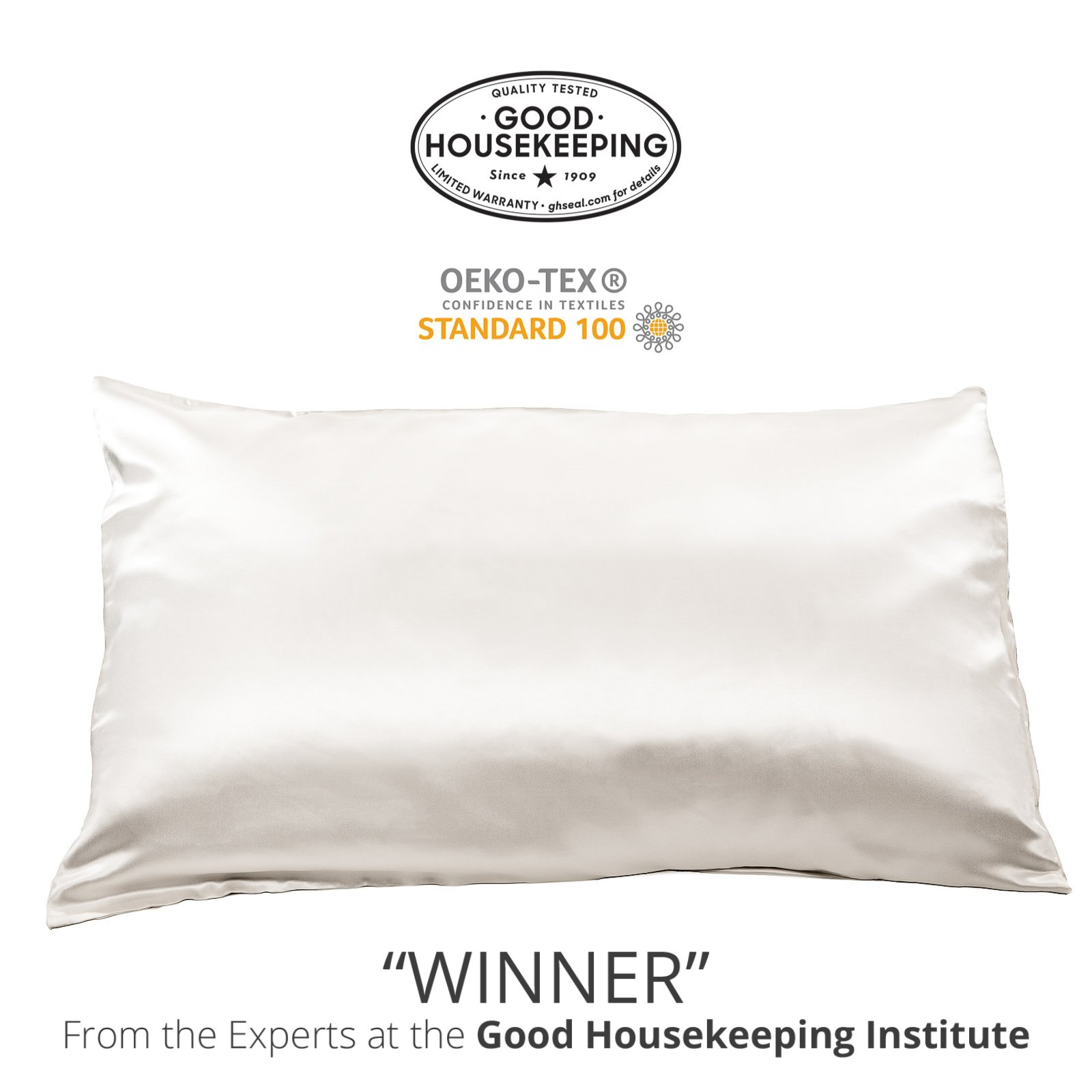 Fishers Finery 25mm 100% Pure Mulberry Silk Pillowcase Good Housekeeping Winner (White, Q)