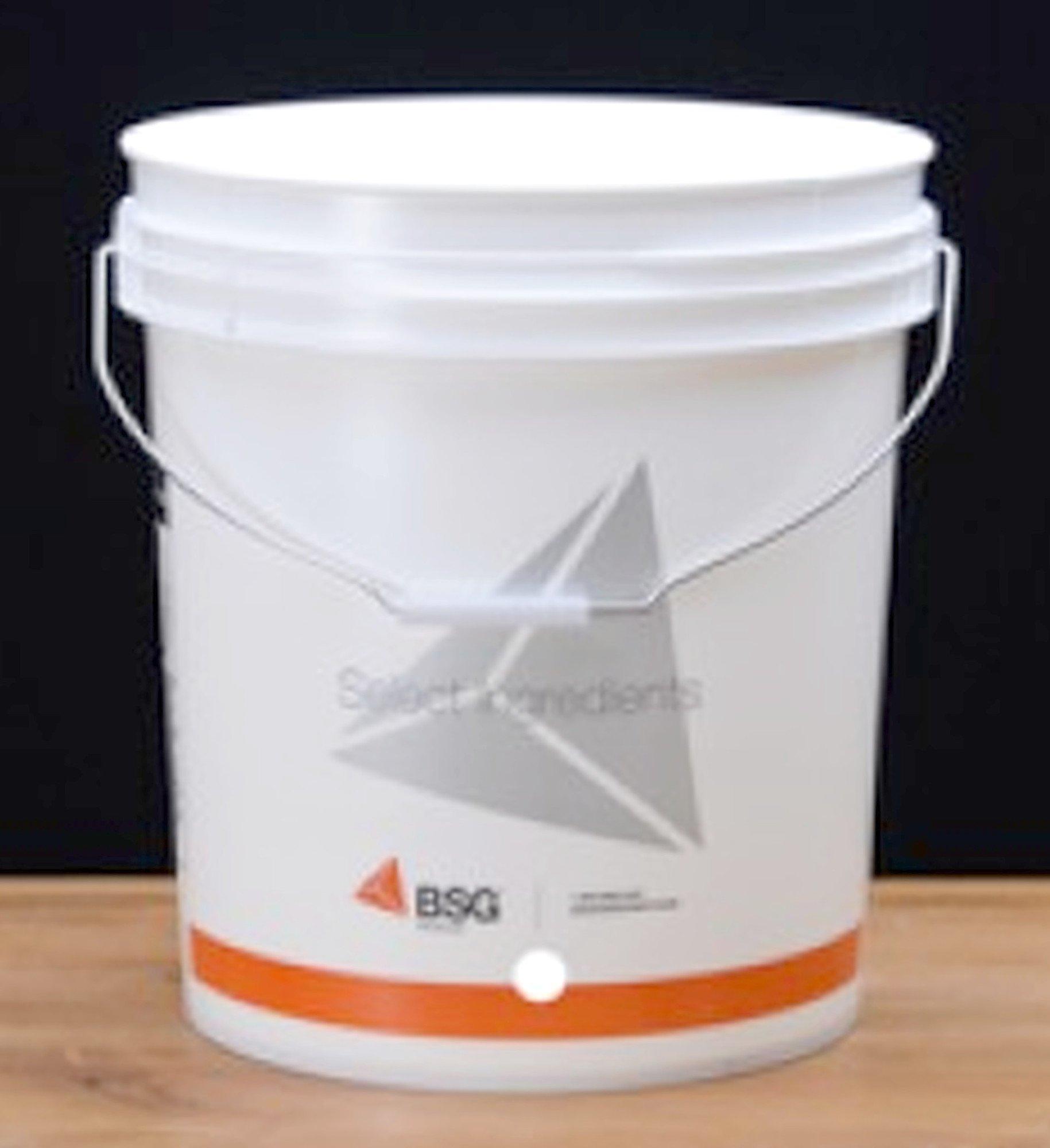 BSG HandCraft 7.8 Gallon Plastic Bottling Bucket