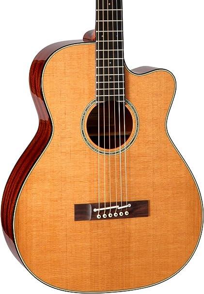 TAKAMINE ef740fs térmica acústica guitarra: Amazon.es ...