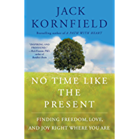 No Time Like the Present: Finding Freedom, Love, and Joy Right Where You Are (English Edition)