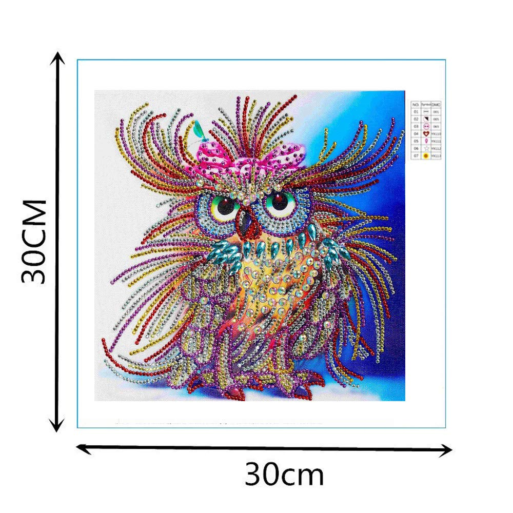 Franterd Colorful Animal Owl Special Shaped Diamond Painting Kits for Adult/&Kids DIY Handmand Partial Drill Cross Stitch Kits Crystal R