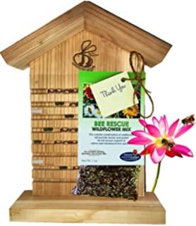 mason bee house for solitary bees bonus viewing window wildflower seeds guide