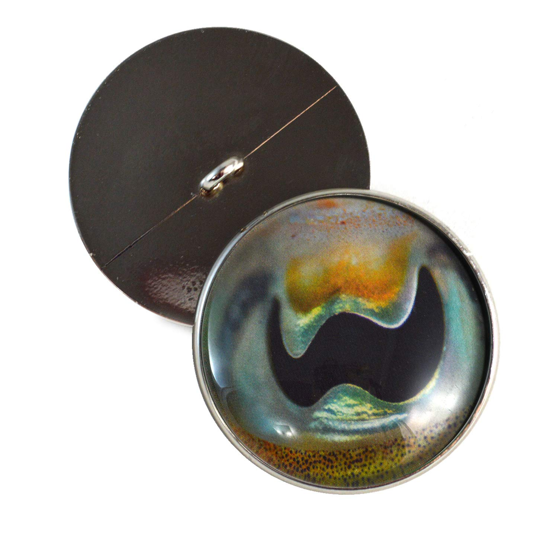 カトルフィッシュ 本物のガラスの目 30mm オーシャン生物ボタン ループ かぎ針編みの人形用 ぬいぐるみやジュエリー製作に 2個セット   B07GZYMTV3
