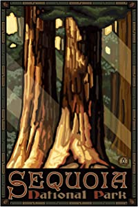 "Sequoia National Park Giant Trees Giclee Art Print Poster from Original Travel Artwork by Artist Paul A. Lanquist 12"" x 18"""