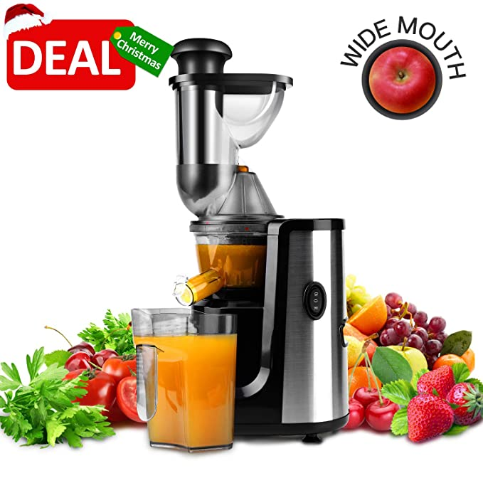 Hornbill Juicer Slow Masticating Juicer Cold Press Juicer Machine,Wide Mouth Whole Masticating Juicer with Juice Jug and Brush, Easy to Clean, Higher Nutrient Fruit and Vegetable Juice