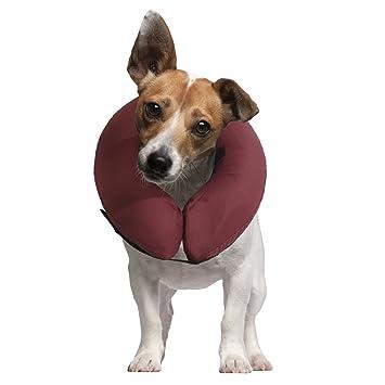 iCollr - El Collar Inflable - Collar Protector para Perros y Gatos en la Recuperación Postoperatoria: Amazon.es: Productos para mascotas
