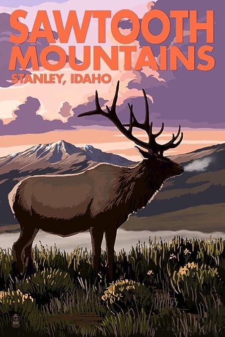 Amazon com: Stanley, Idaho - Sawtooth Mountains - Elk and