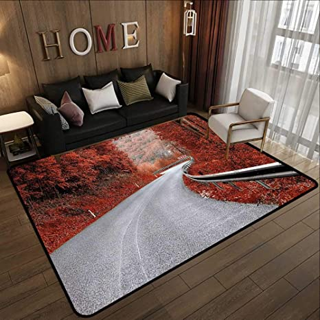 Image result for fall  home carpets""