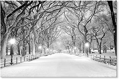 Amazon Com Seven Wall Arts Beautiful Winter Landscape Snowy Central Park Canvas Art Modern Wall Pictures Giclee Print On Canvas Photo Artwork For Bedroom Living Room Home Decor 36 X 24 Inch Home
