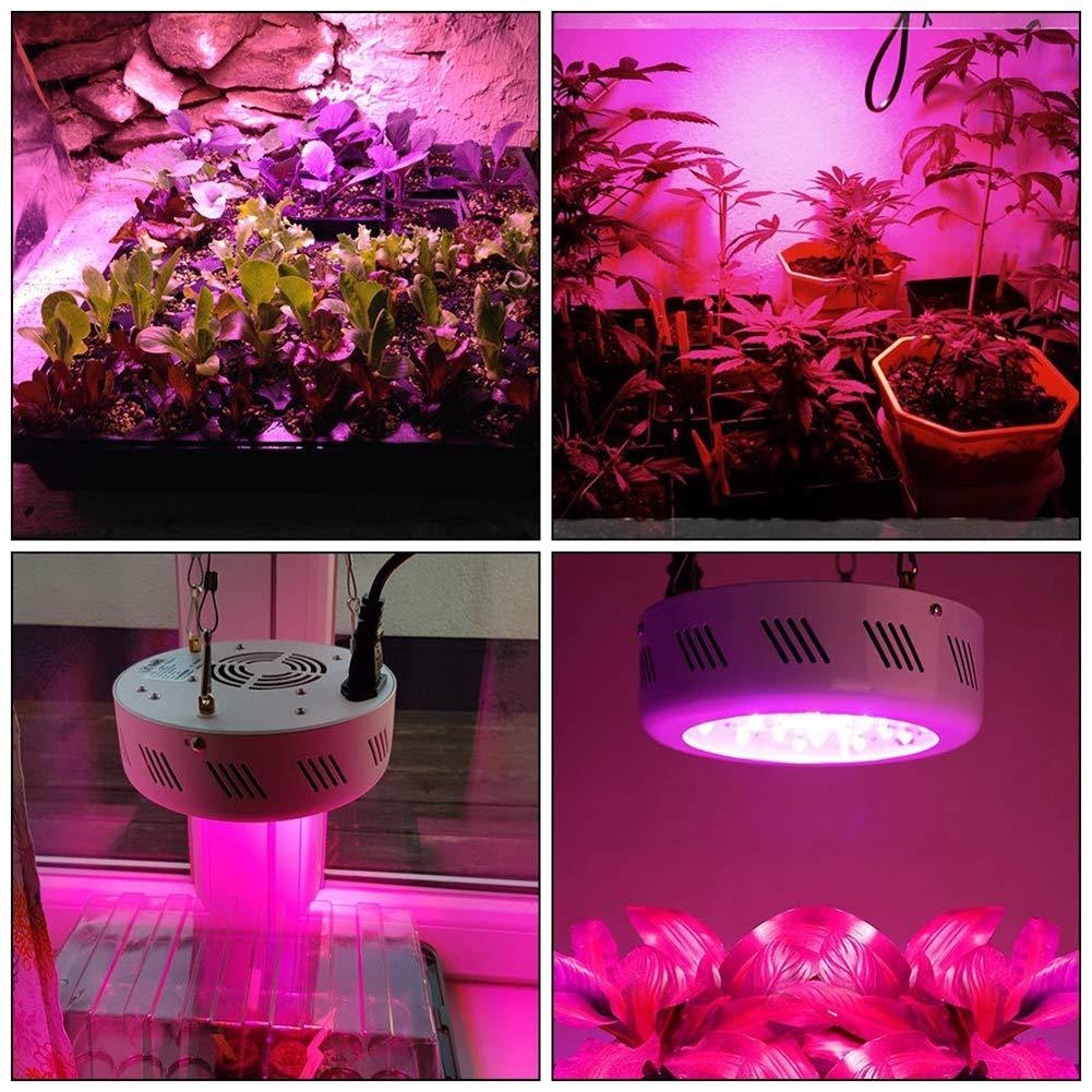 Grow 150w Led Lumiè Light Uv Zhedan Re Lampe HorticoleAvec Ir NnOZ8Pk0wX