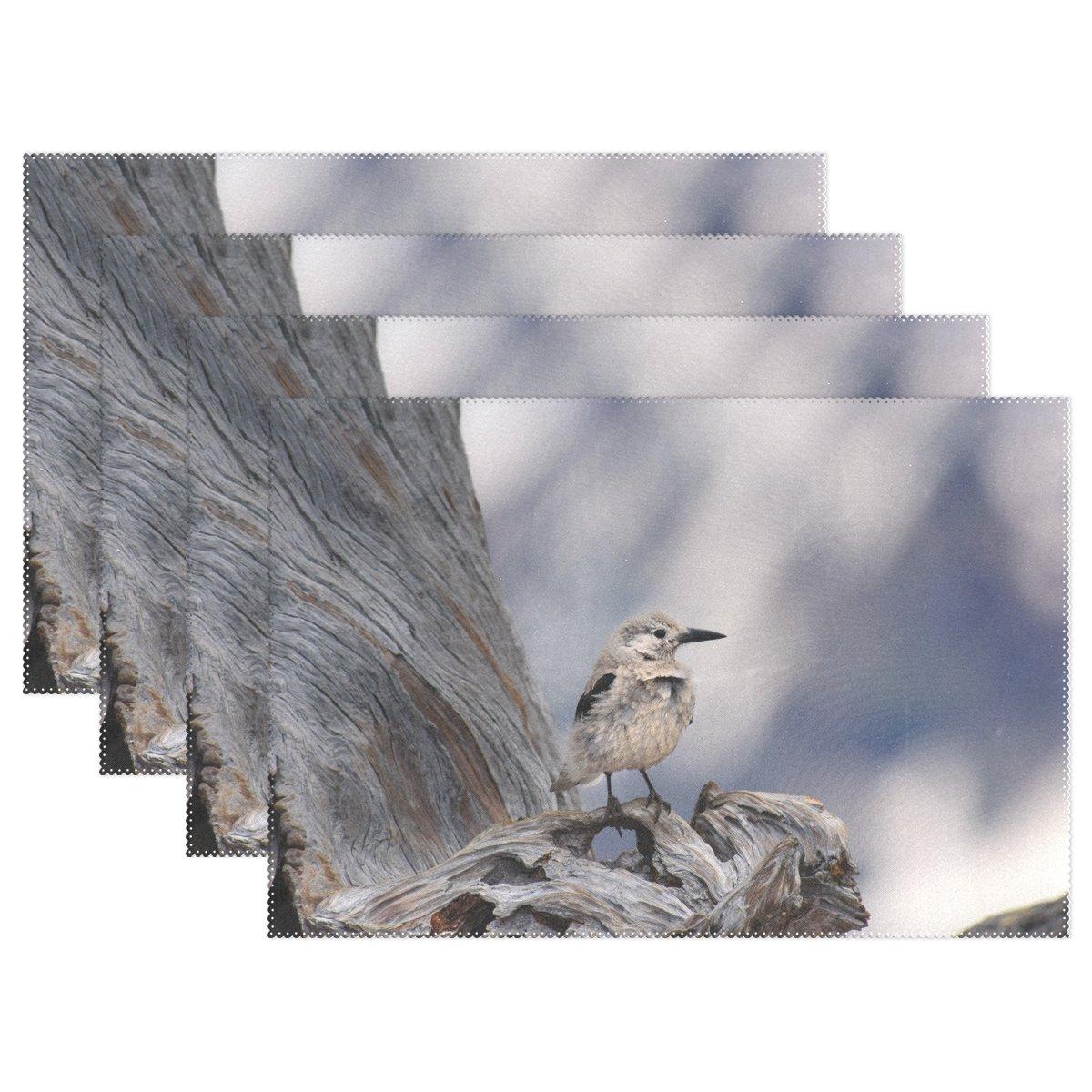 鳥印刷、プレースマットalirea耐熱プレースマット汚れ防止滑り防止洗濯可能ポリエステルテーブルマット非スリップEasy Cleanプレースマット、12