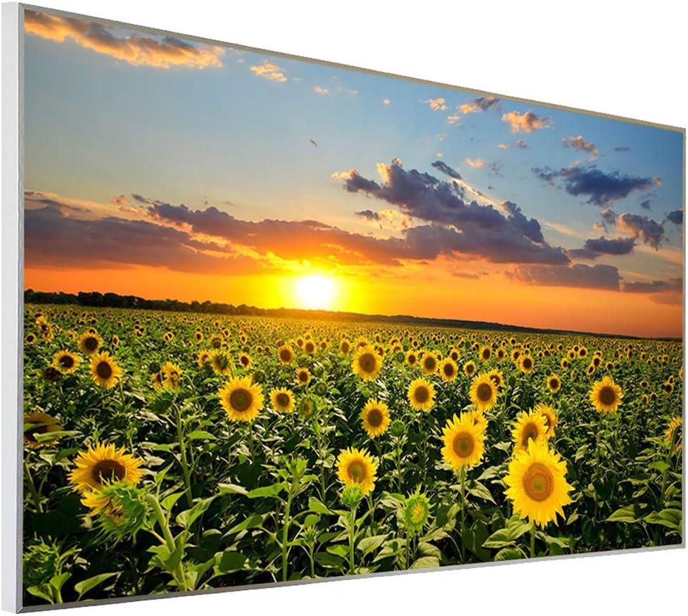 60x100 cm Infrarot Heizung  Ecowelle Infrarotheizung mit Bild 1 Made in Germany  600 Watt