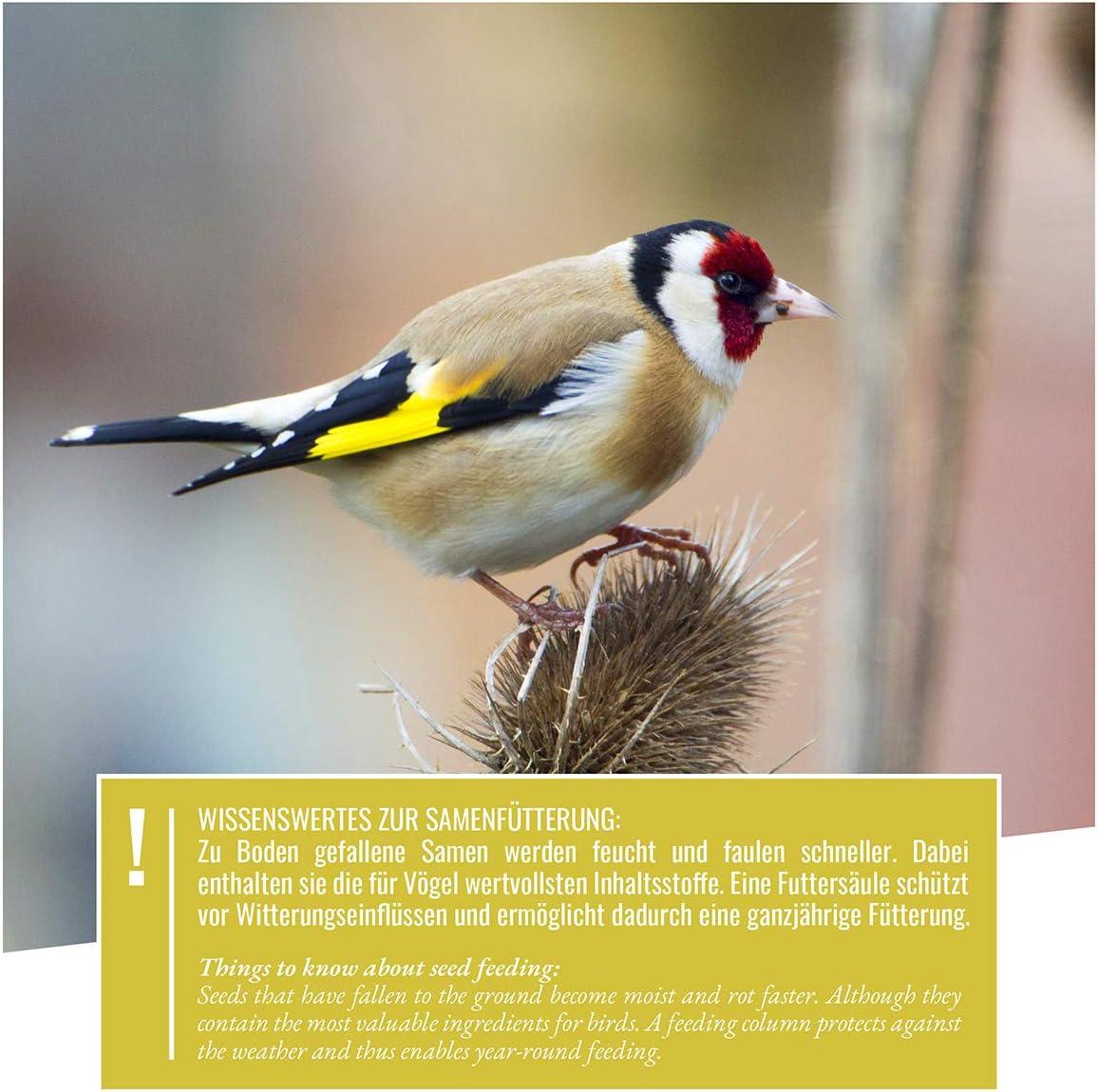 wildtier herz 52cm XL Colonne dalimentation Niger graines Noir pour chardonneret et Tarin Garantie 5 Ans mangeoire pour Oiseaux en m/étal antirouille