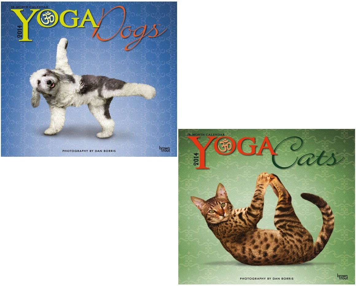 2014 Yoga Dogs and 2014 Yoga Cats 18 Month Calendars: Dan ...