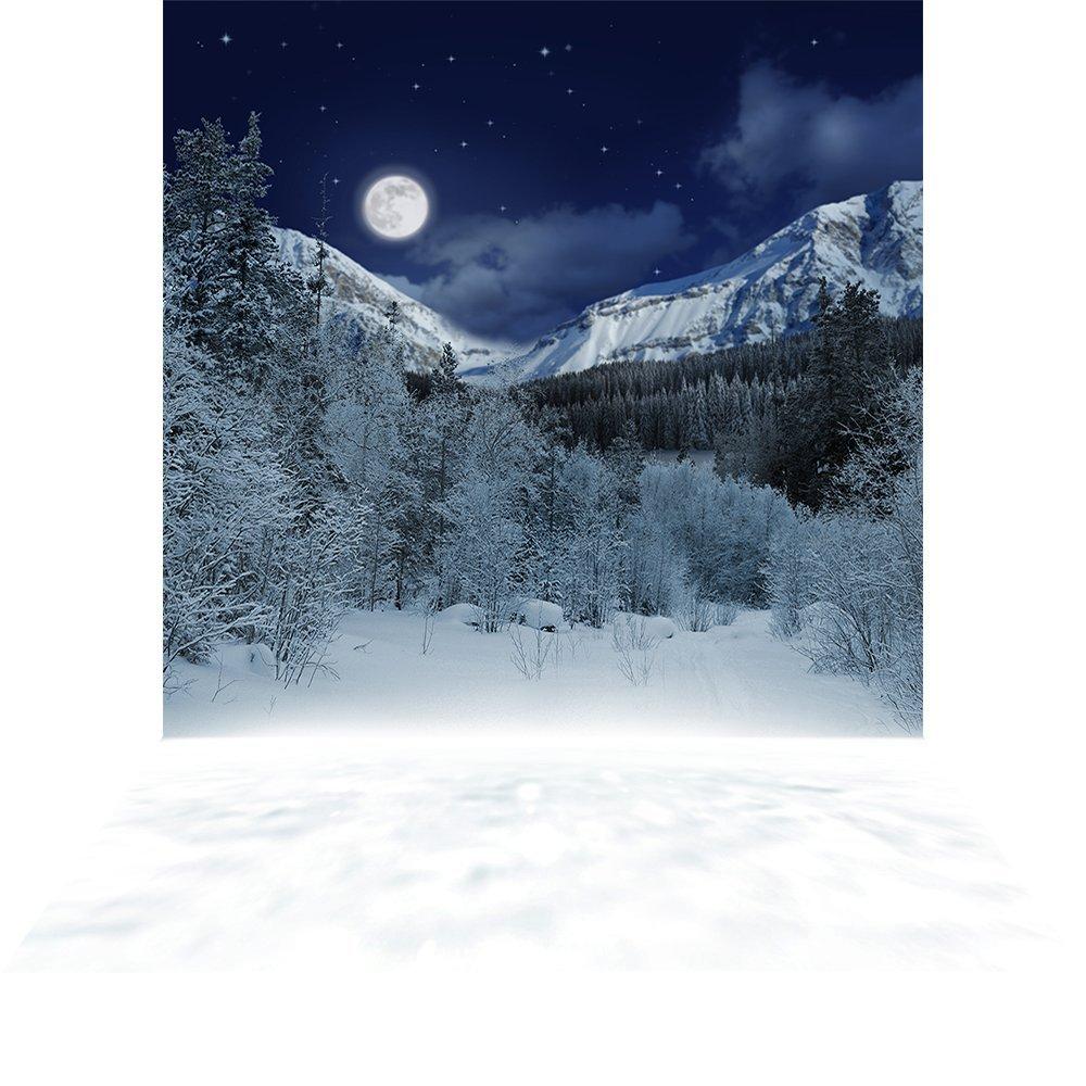 写真バックドロップ – Alpine Night – 10 x 20 ft。 – 高品質シームレスなファブリック   B013599BQG