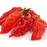 "Ghost Pepper Seeds- 25+""Bhut Jolokia"" by Ohio Heirloom Seeds"