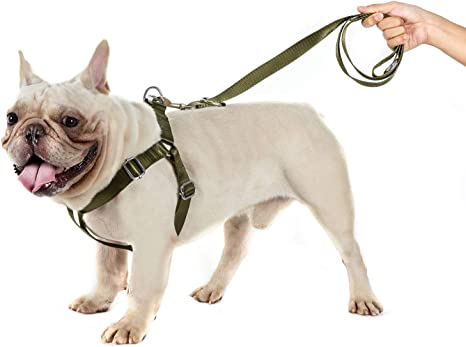 OneTigris Molle - Arnés táctico para Cachorros, Ajustable, Suave ...
