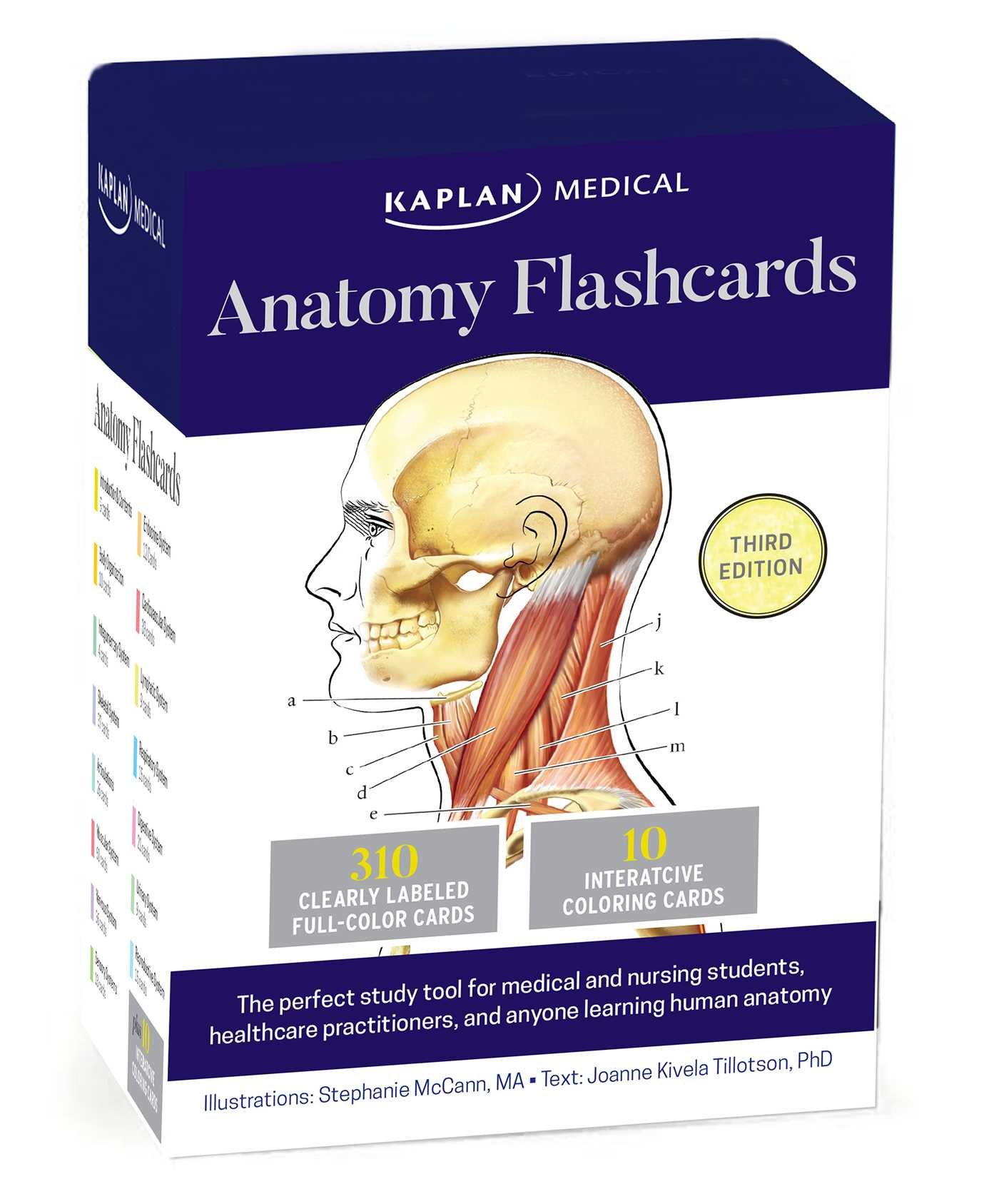 Anatomy Flashcards Amazon Joanne Tillotson Stephanie Mccann