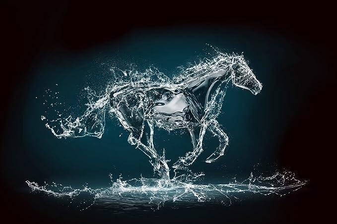 Envogue Wallpaper Horse 3d Design Washable 5ft X 4ft Amazon In
