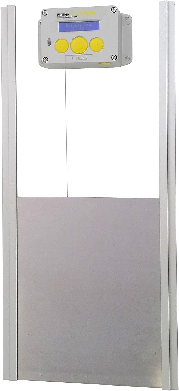 Brinsea Products - Abridor de Puerta y Kit de Puerta automático para gallina y gallina, Gris/Amarillo: Amazon.es: Productos para mascotas