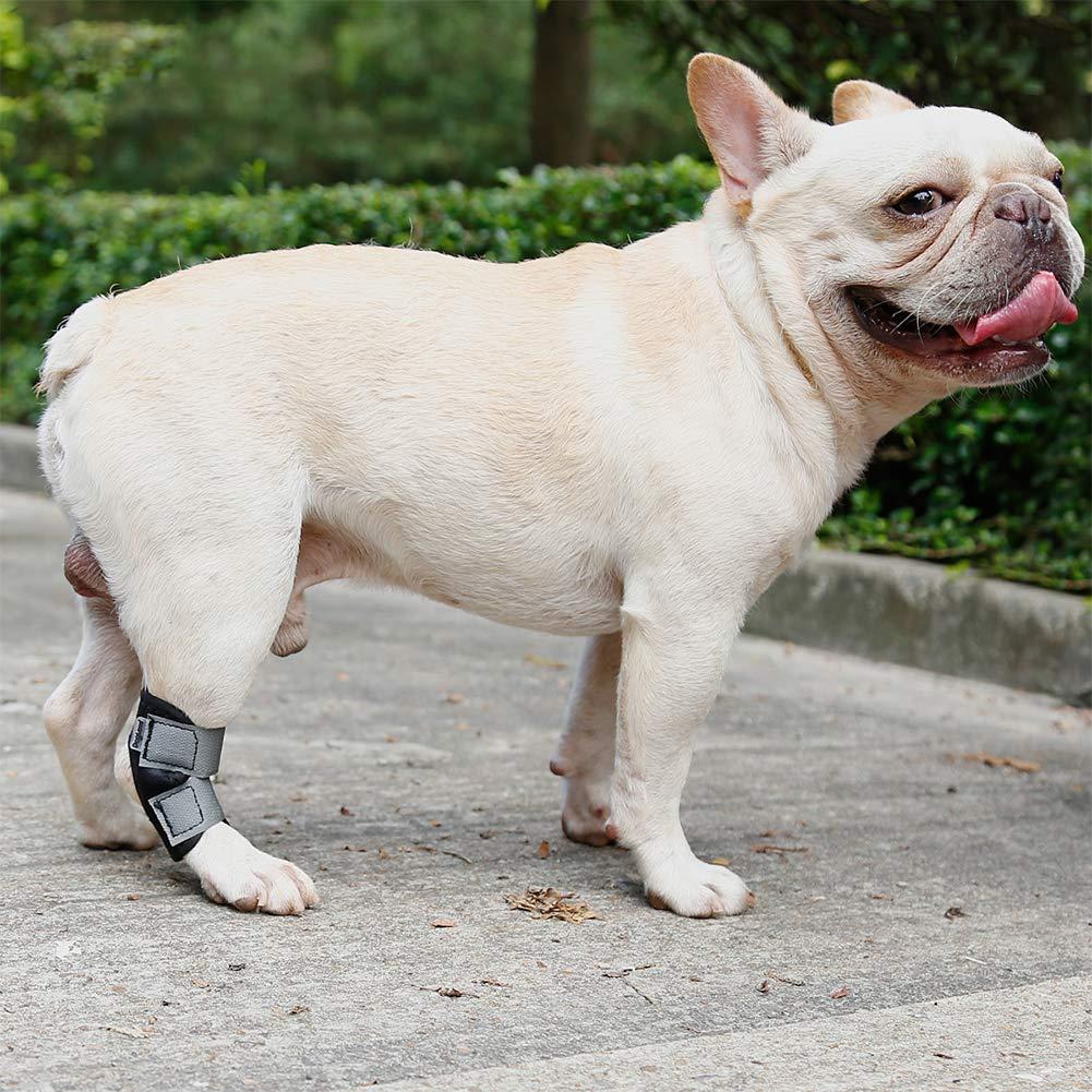 Pet Wound Bandage Chien Jambe Brace Chat Animal Auto-Adhérent Wrap Empêcher Pet Léchage Plaies 1 PC Lanlan