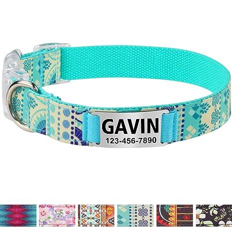 Vcalabashor Collar de Perro Personalizado, Placa de Acero Inoxidable grabada con Nombre y Número de Teléfono del Perro,Turquesa Medio