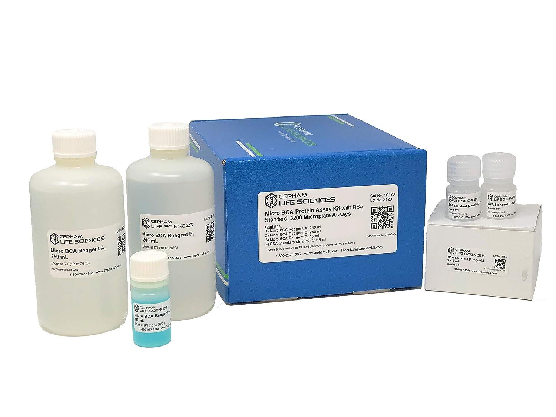 Micro Bicinchoninic Acid (BCA) Protein Assay con BSA Protein ...