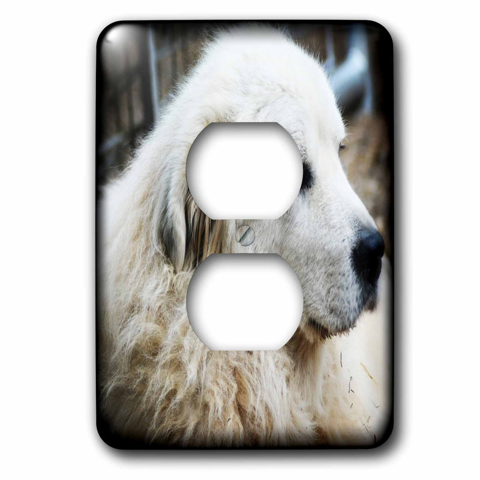 3dRose WhiteOaks Photography and Artwork - Dog Humor - Profile of a Guard Dog is an old farm dog who guards the animals - Light Switch Covers - 2 plug outlet cover (lsp_265352_6)