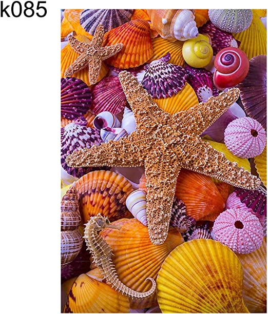MYGYSJK K022 - Patrón de concha de mar para manualidades, sin ...