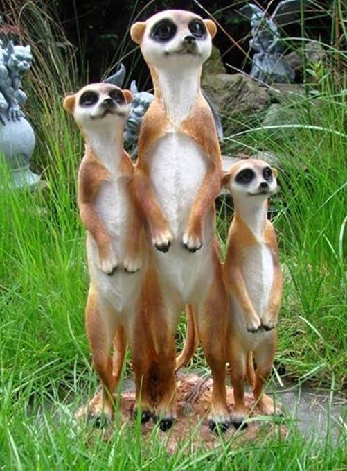 SSITG Familia de suricatos Figura Jardín Figura Top Precio nuevo: Amazon.es: Jardín