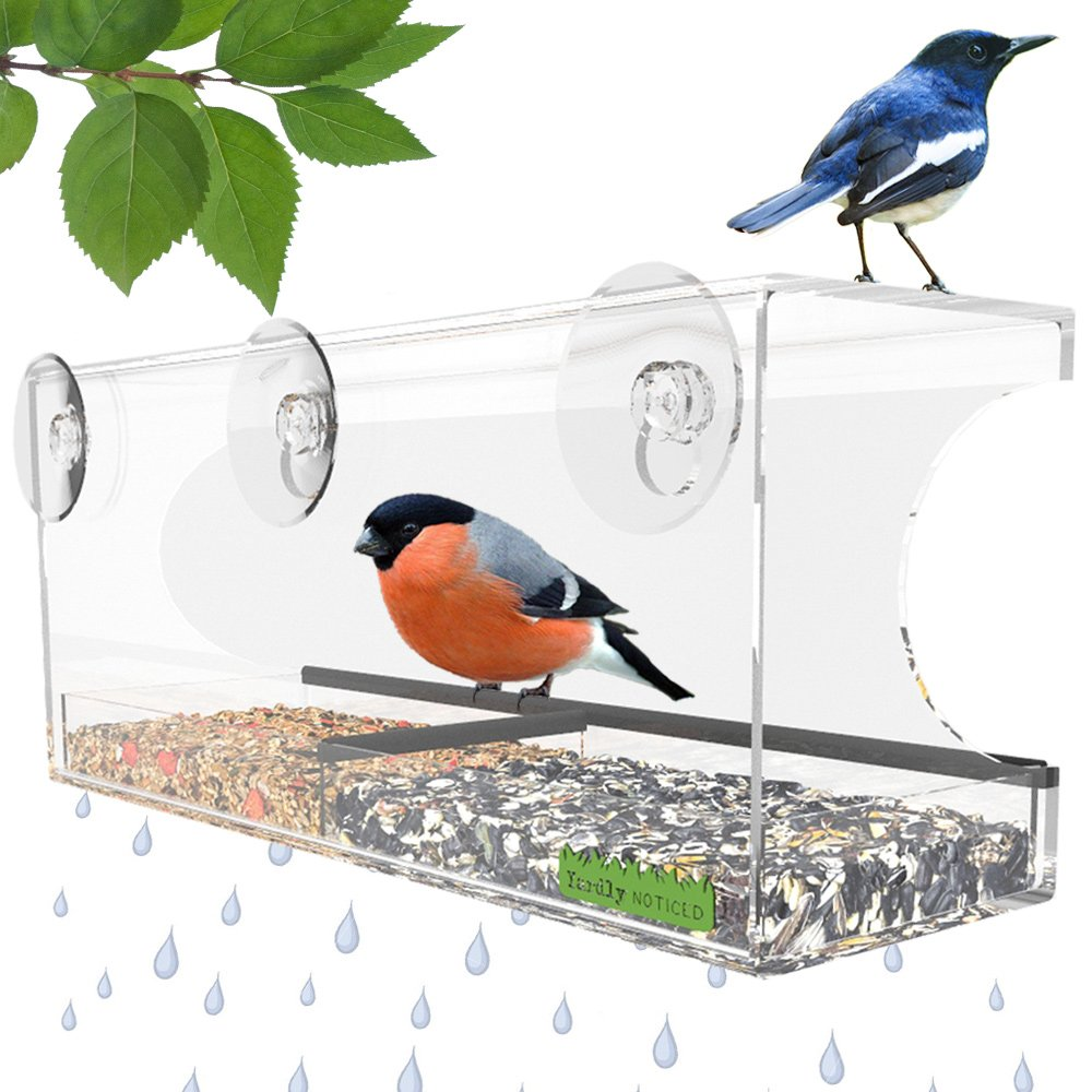 Window bird house as seen on tv - Window Bird Feeder Best Window Mounted Bird Feeders For Kids Cats Multi Perch Removable Inner Tray W Drain Holes Clear See Through Durable Suction