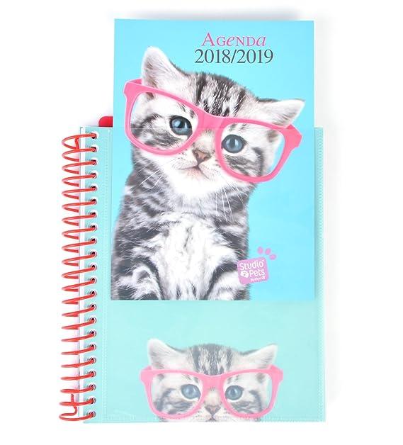 Grupo Erik Editores - Agenda escolar STUDIO PETS CAT 2018/2019 Semana vista, 15,5 x 19 cm