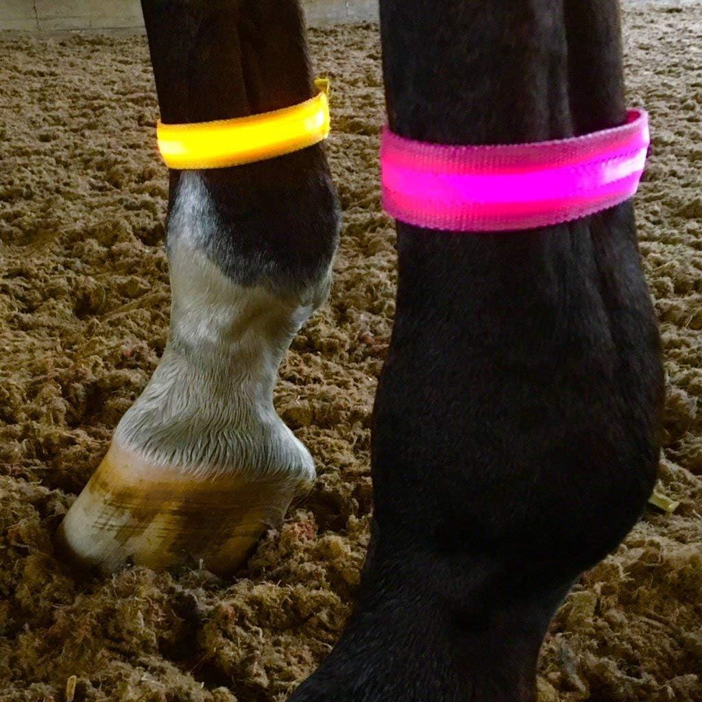 Equisafety LED Arm//Leg Band
