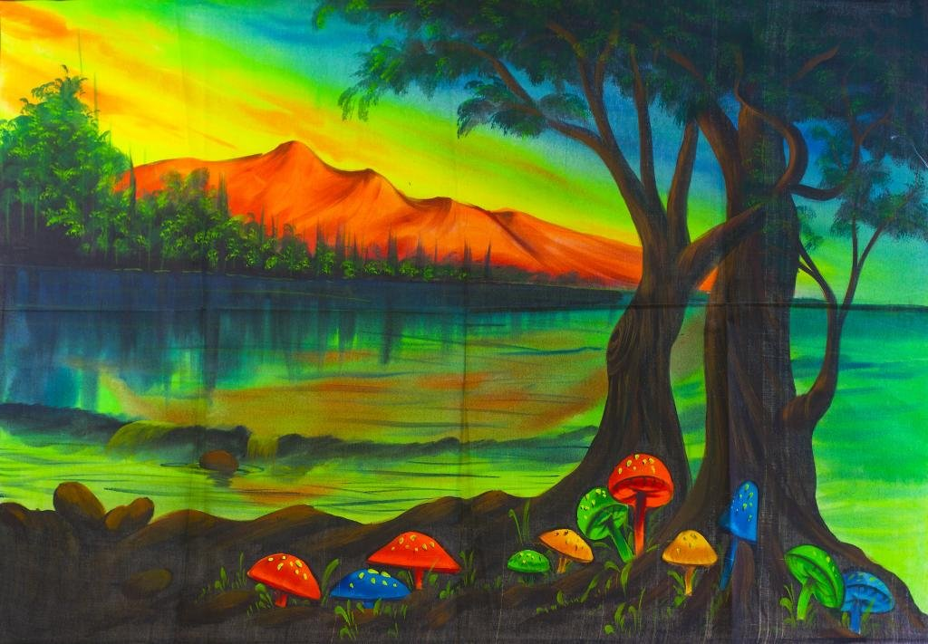 ImZauberwald Mushroom Lake UV Painting ( 62x91cm, Schwarzlicht aktiv ) handgemalenes Painting psychedelic Goa Trance Party Dekoration 9