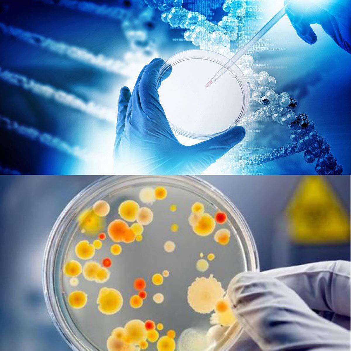 Bo/îtes de Petri en Plastique avec Couvercles,Tangger Bo/îtes de P/étri St/ériles Jetables Pour la Culture Exp/érimentale de Microorganismes Tels Que Les Champignons Bact/ériens,55mm 70mm 100mm,20 PCS