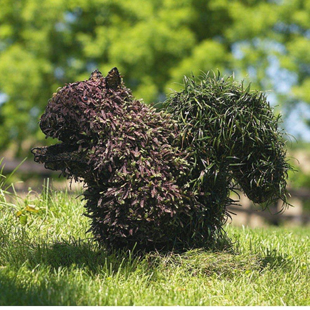Gartenfigur Eichhörnchen Draht-Figur für Moos 46 cm: Amazon.de: Garten