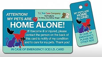 Amazon.com: My Pets Dog Cat Home están solos Alerta ...