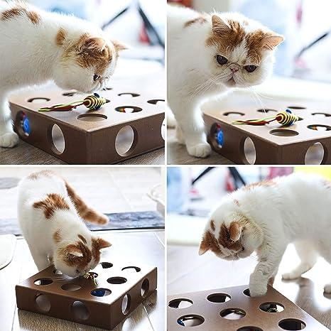 Eyefed - Caja de Juguetes interactiva para Gatos, 21 Agujeros, para Tratar y Buscar