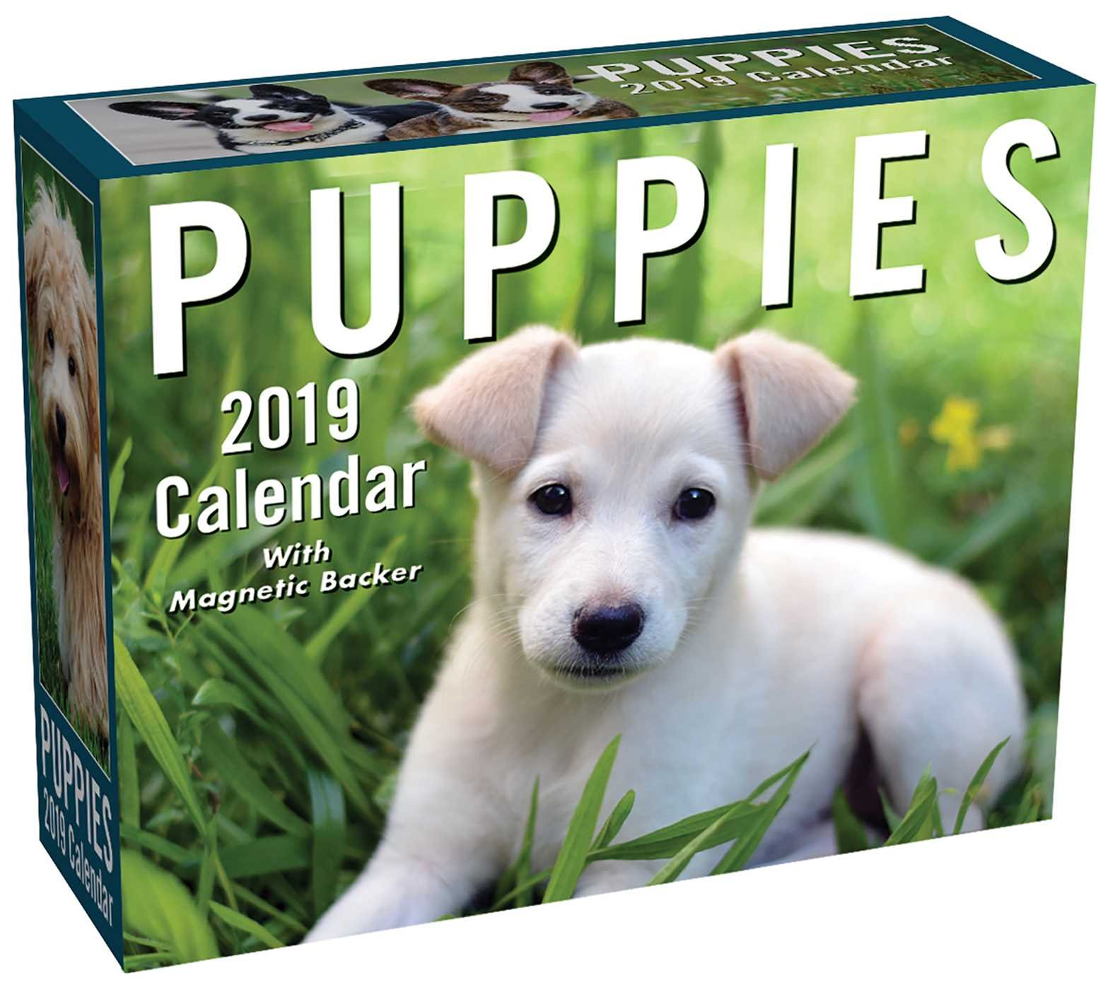 Puppies 2019 Mini Day-to-Day Calendar Calendar – Day to Day Calendar, August 7, 2018 Andrews McMeel Publishing 1449491901 Calendars NON-CLASSIFIABLE