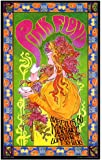 Pink Floyd - Poster - Limited Concert Promo Art Poster Print by Bob Masse, 15x24