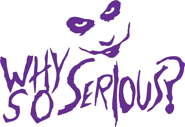 PanWenJuan -Why So Serious - The Joker - Vinyl Decal Car Sticker| Car Decal, Car Stickers, Window Decal,Wall Sticker/Decal Sticker Car Truck Window Die Cut Vinyl (30x20 cm) (Purple)