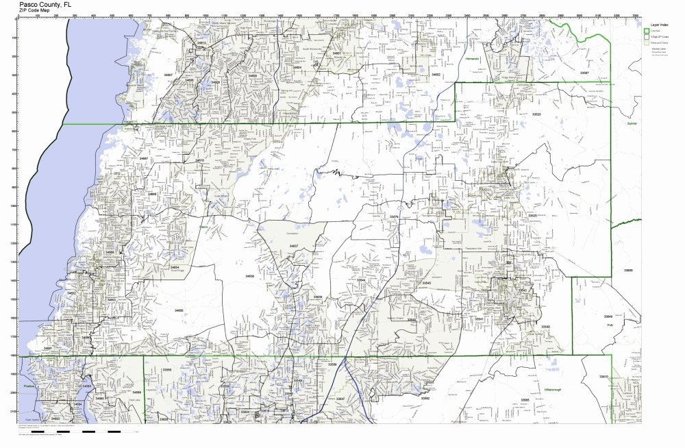 Amazon.com: Pasco County, Florida FL ZIP Code Map Not Laminated