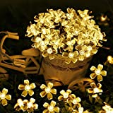 RaajaOutlets 40LED Cherry Blossom Flower Fairy String Lights for Decoration Indoor Outdoor Diwali,Christmas,Holiday and Festivals Decorations