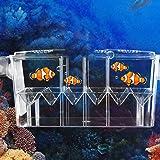 Caja de escotilla flotante y transparente, multifunción, de doble capa, para acuario, criadero con…