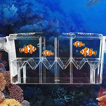 Caja de escotilla flotante y transparente, multifunción, de doble capa, para acuario,