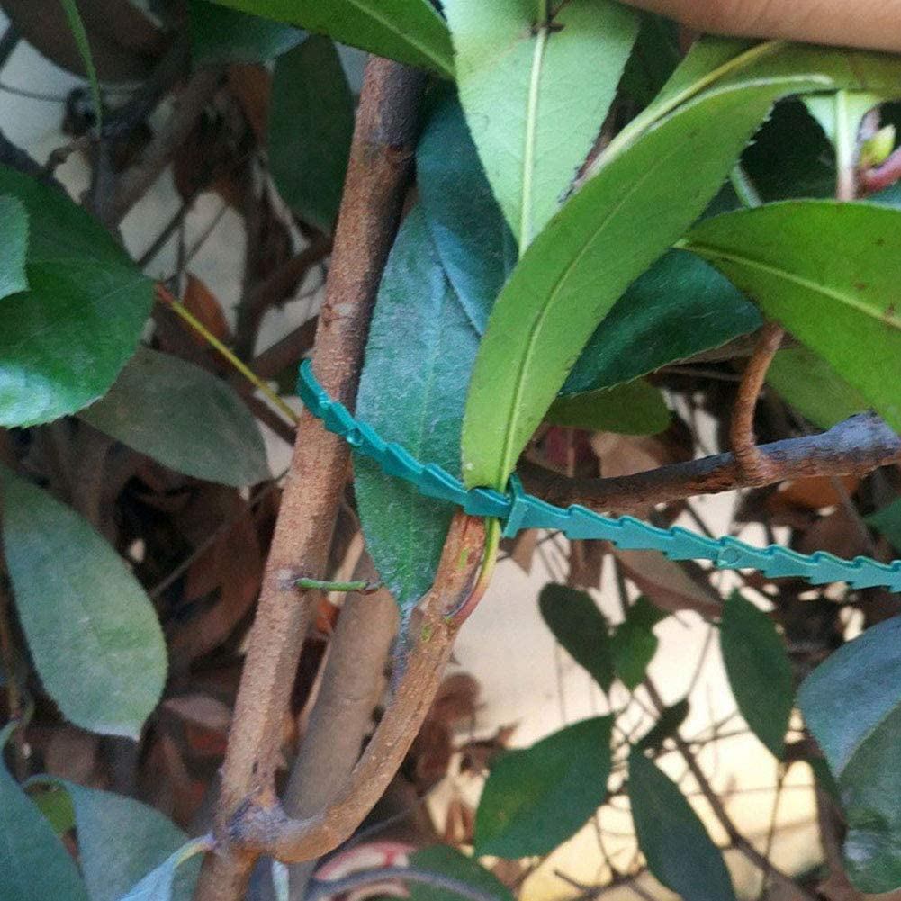 50Pcs Ajustable Garden Plant Twist Ties Flexible Plastic Gardening Grips Plant Support Ties Stylelove Green Garden Twist Ties