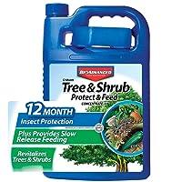 BioAdvanced 701615A Gal Tree and Shrub Control, 1 gallon, Concentrate