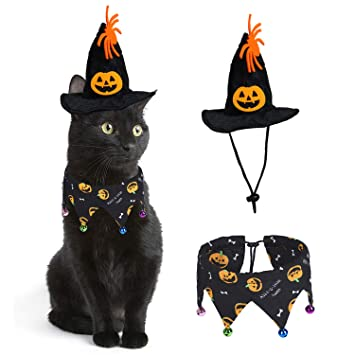 Amazon.com: RYPET Disfraz de gato de Halloween, collar de ...
